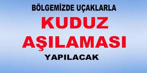 Türkiye'de aşı kampanyası başlatıldı