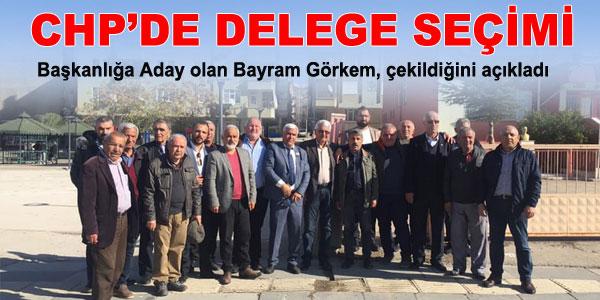 CHP'de delege seçimi yapılıyor