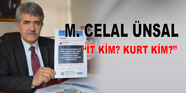 Celal Ünsal: İt kim, kurt kim?