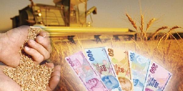 Tarımsal Destekleme ödemeleri yapılıyor