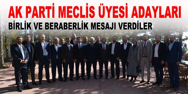 Ak Partili meclis adaylarıyla istişare toplantısı