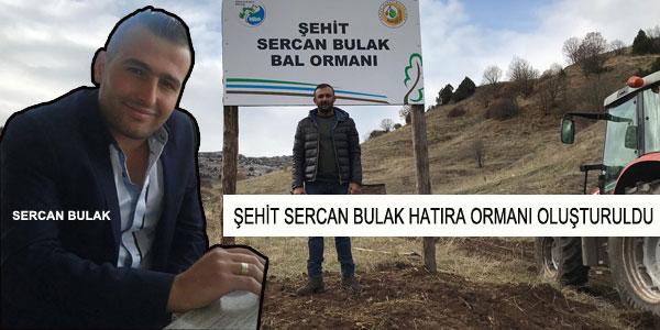 Sivas'ta 'Şehit Sercan Bulak Hatıra Ormanı' oluşturuldu