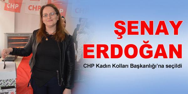 CHP Kadın Kolları seçimi yapıldı