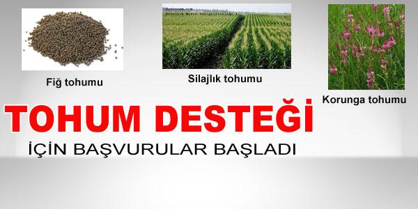 Büyükşehir Belediyesi tohum dağıtacak